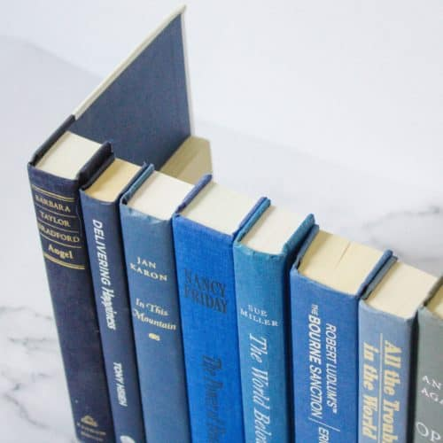 The Only Hidden Book Storage Box You'll Ever Need